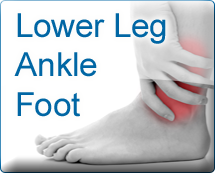 Lower Leg Ankle Foot